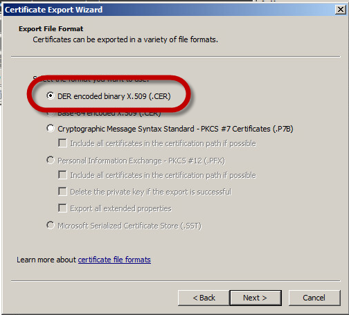 Cannot export the private key from my Windows server